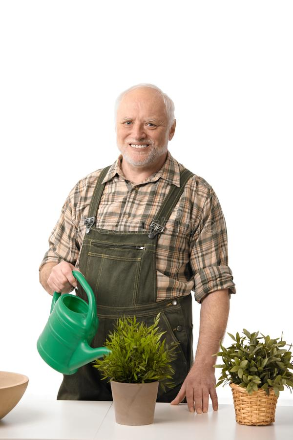 Download Senior man watering plants stock image. Image of american - 23095629