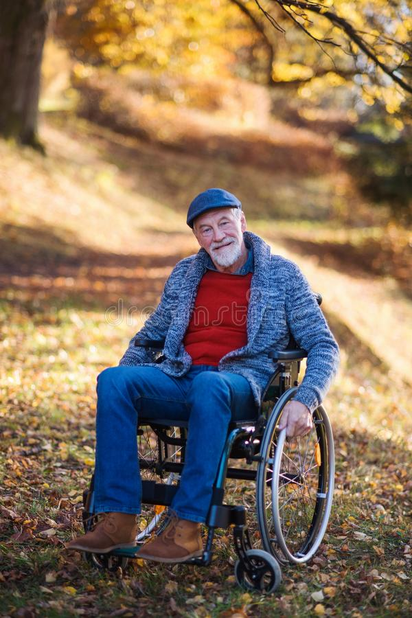 Senior man with wheelchair on walk in nature, looking at camera. Senior man with wheelchair on walk in autumn nature, looking at camera royalty free stock image