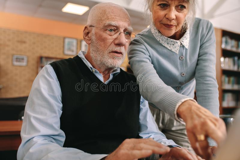 Senior man and woman looking at a computer screen royalty free stock photo