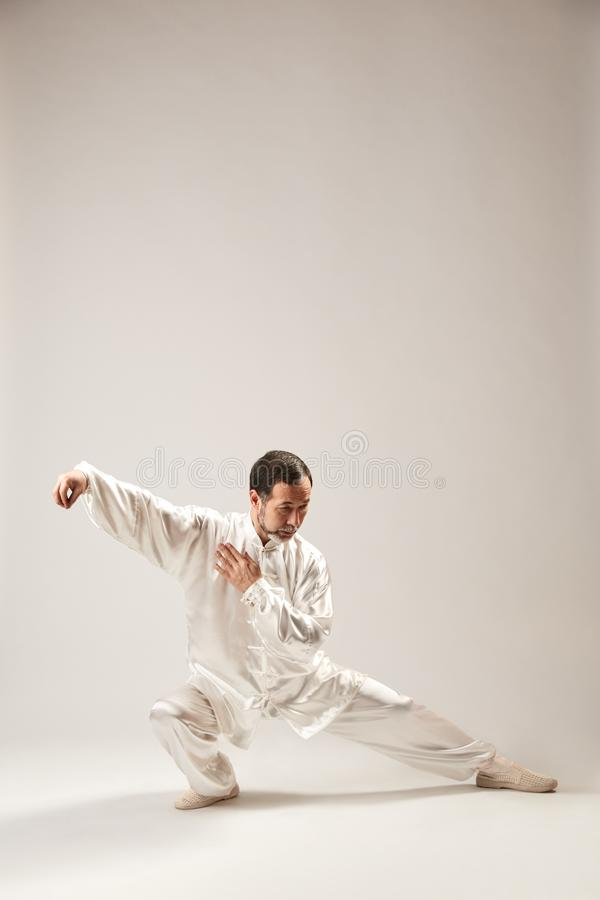 Senior master practicing qi qong taijiquan royalty free stock photography