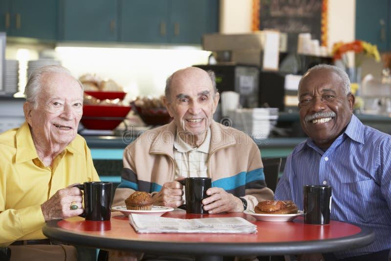 Senior men drinking tea together royalty free stock images
