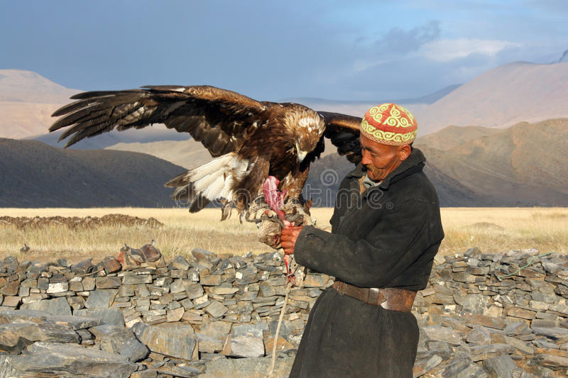 Senior Mongolian horseman in traditional clothing. With golden eagle royalty free stock photo