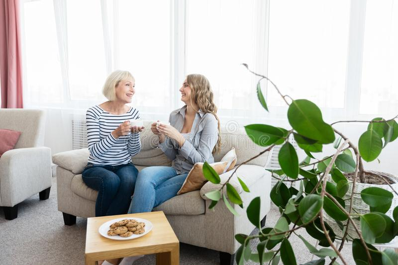 Senior mother and daughter drinking tea and talking stock image