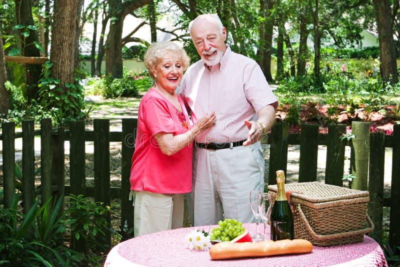 Senior Picnic Surprise royalty free stock image