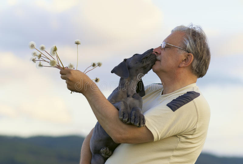 Download Senior with puppy stock photo. Image of care, body, aging - 17561328