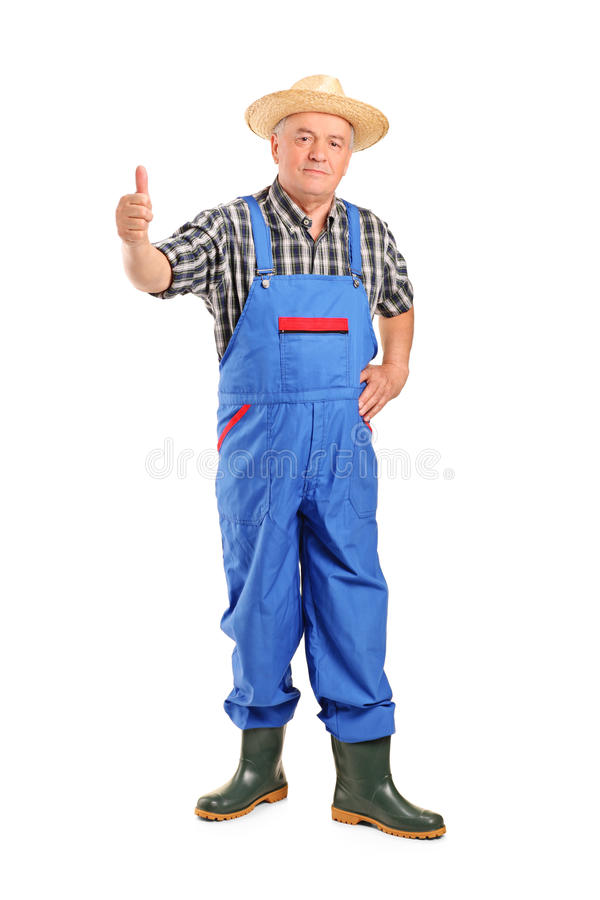Senior smiling farmer giving a thumb up stock images