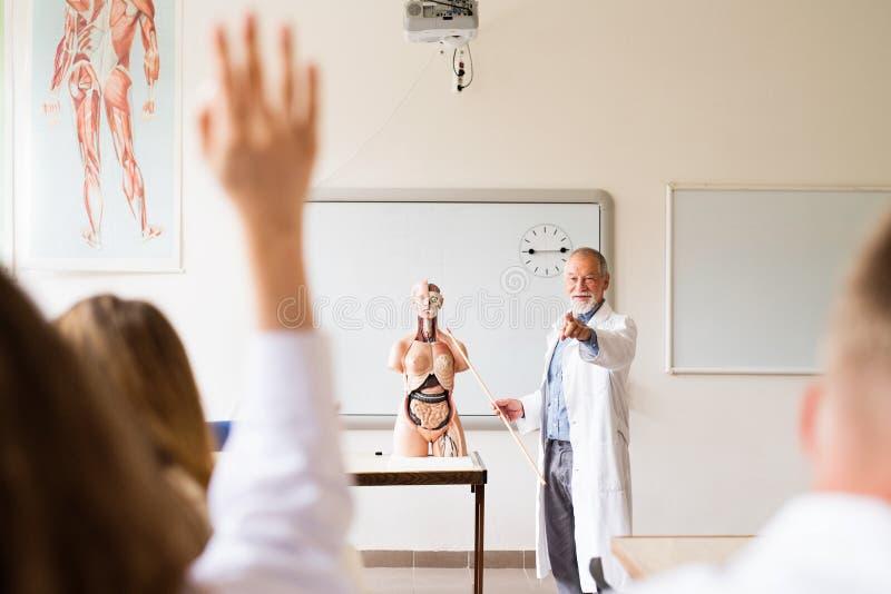 Senior Teacher Teaching Biology To High School Students Stock Photo