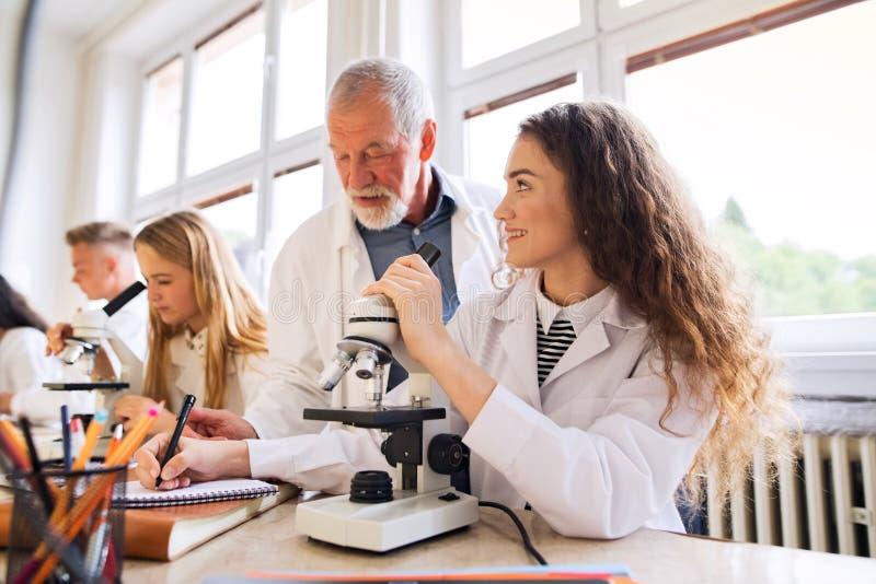 Senior teacher teaching biology to students in laboratory. stock image