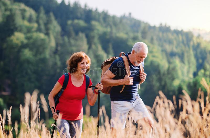 Senior tourist couple travellers hiking in nature, walking and talking. A senior tourist couple travellers hiking in nature, walking and talking stock images