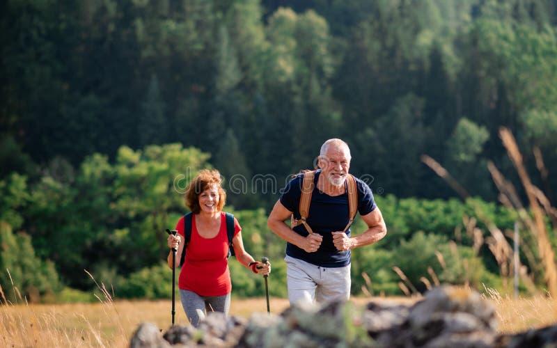 Senior tourist couple travellers hiking in nature, walking and talking. A senior tourist couple travellers hiking in nature, walking and talking stock photos