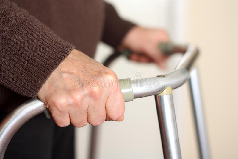 Senior using a walker royalty free stock photo