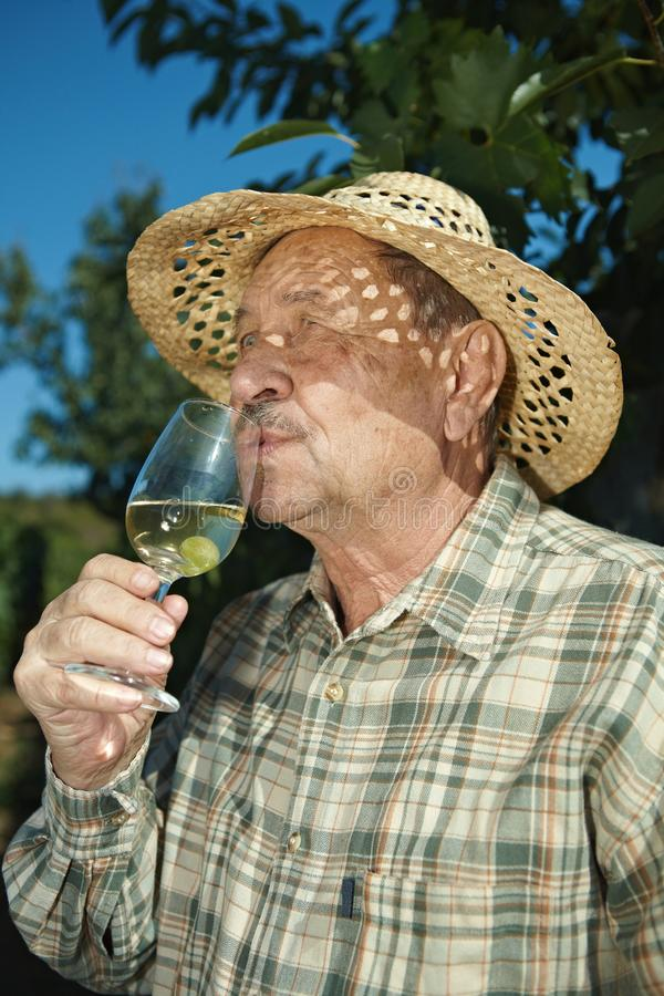 Download Senior Vintner Tasting Wine Stock Image - Image: 20941271