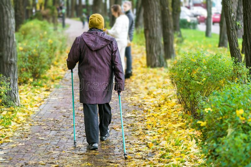 Senior woman enjoying nordic walking at beautiful colorful autumn park. Old age person doing pole walk excercise stock photo