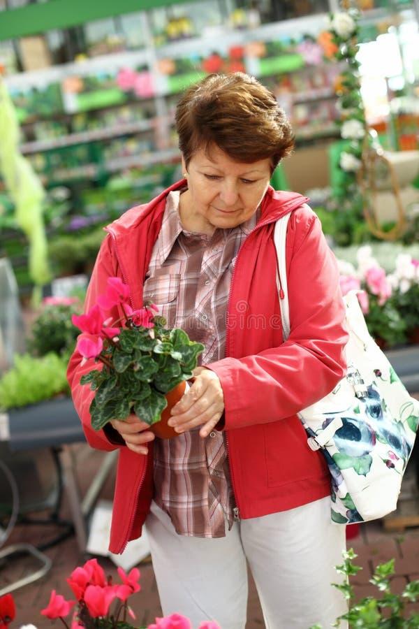 Senior Woman In Flower Shop Royalty Free Stock Photo