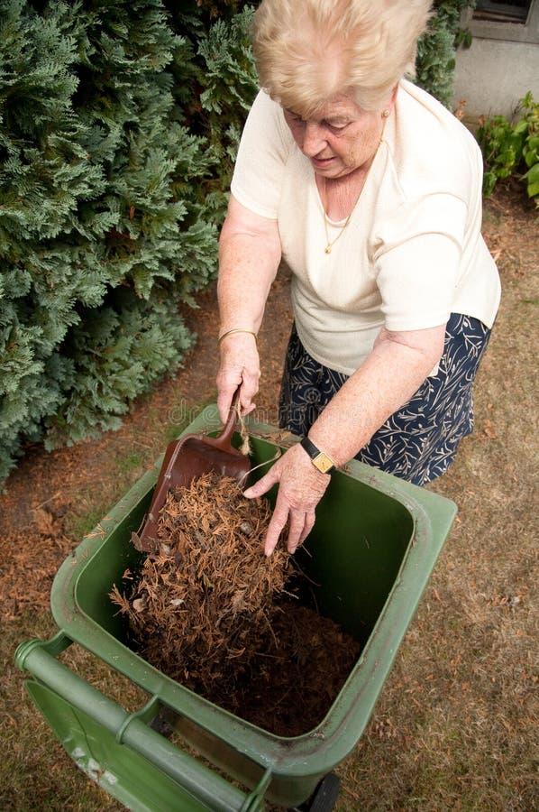 Download Senior woman gardening stock image. Image of hands, lady - 10909839
