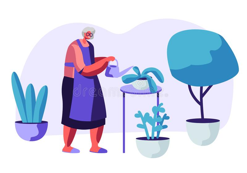 Senior Woman Gardening Hobby. Aged Grey Haired Female Character in Apron Caring of Home Plants in Pots. Old Lady Watering Can royalty free illustration