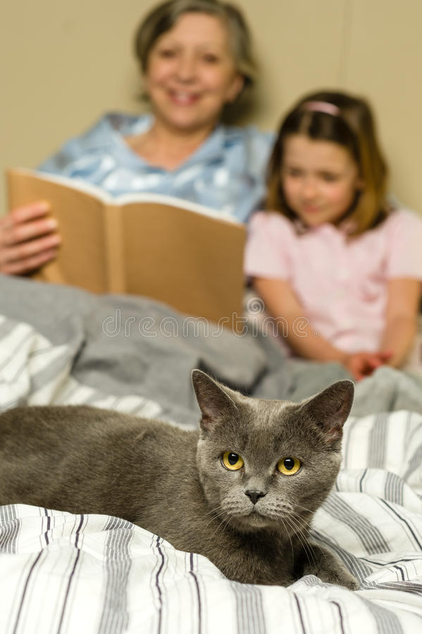 Download Senior Woman And Granddaughter Reading With Cat Stock Photo - Image: 30865350