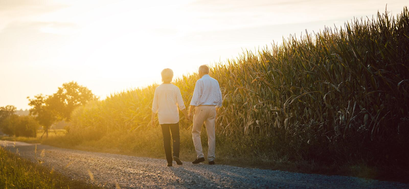 Senior woman and man having a walk along a field. Holding hands royalty free stock images