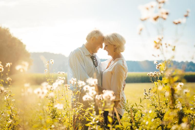 Senior woman and man hugging still being in love royalty free stock image