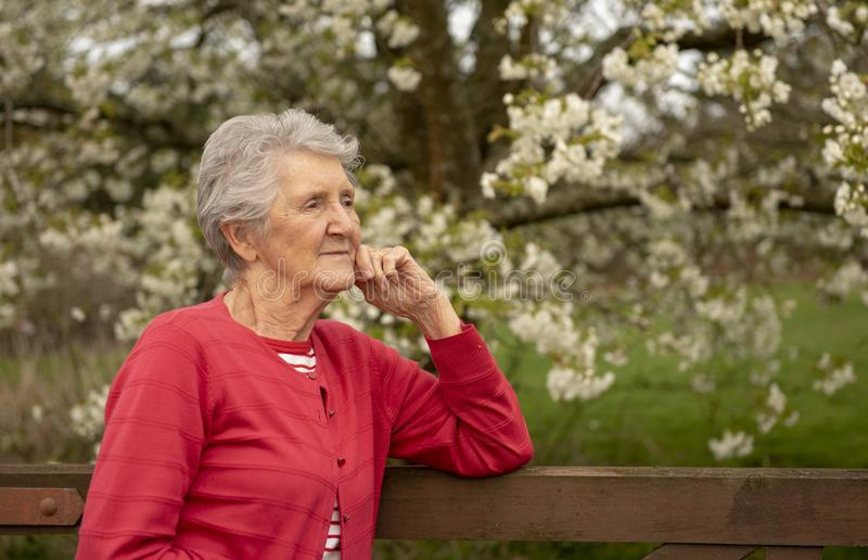 Senior woman outdoor portrait in Spring stock photography