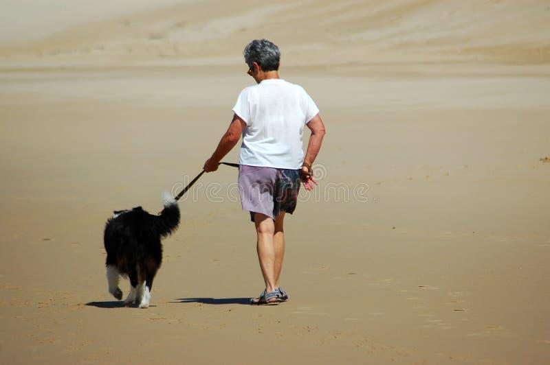 Download Senior Woman Walking Her Dog Stock Photo - Image: 1552694