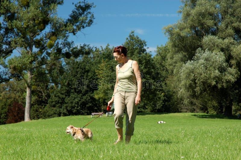 Senior Woman Walking Her Dog Royalty Free Stock Images