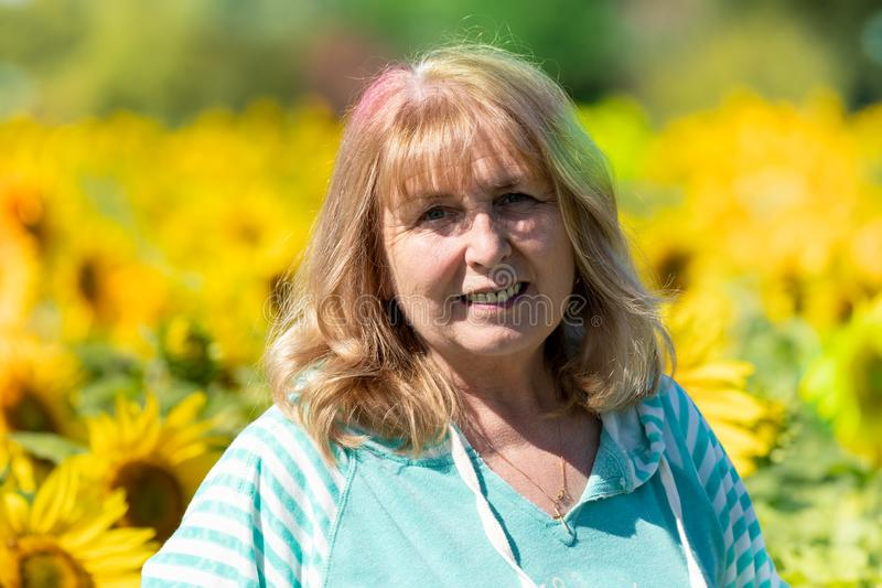 Senior woman 60-65 years poses in front of a field of sunflowers.  royalty free stock images