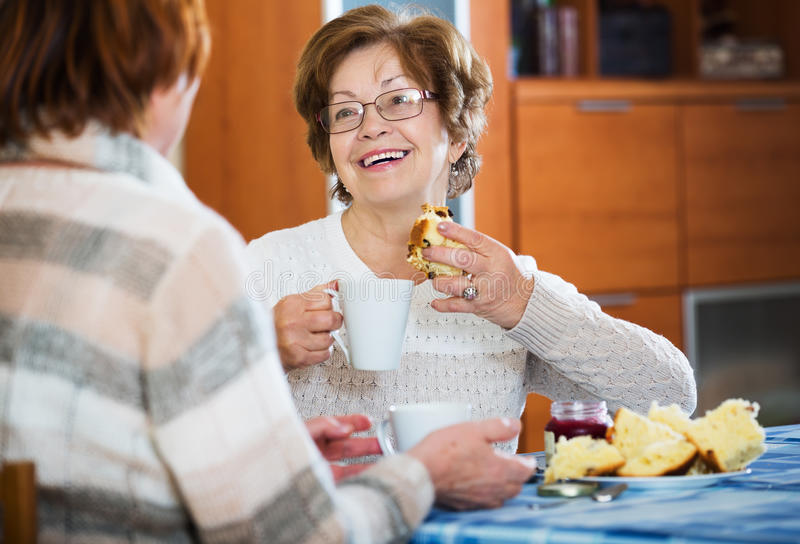 Senior women having conversation royalty free stock image