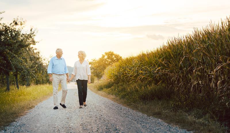 Senior woman and man having a walk along a field. Senior women and men having a walk along a field holding hands stock photos