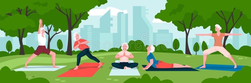 Senior women practicing yoga in green city park. Vector flat cartoon illustration. Concept of active healthy lifestyle vector illustration