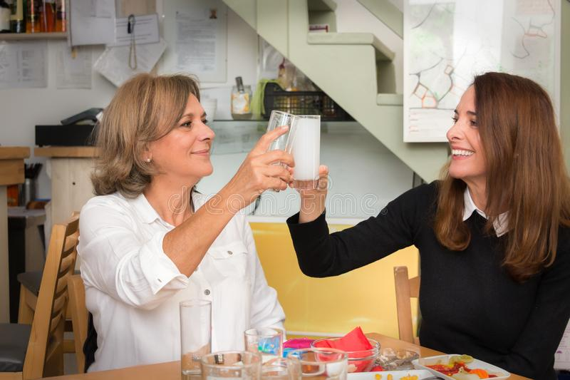 A senior and a mature woman toasting. stock images