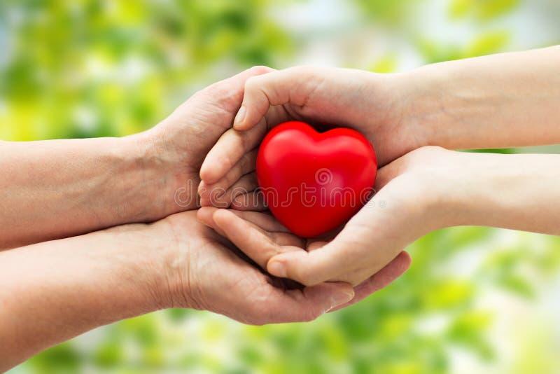 Seniora i młodej kobiety ręki trzyma czerwonego serce obraz stock