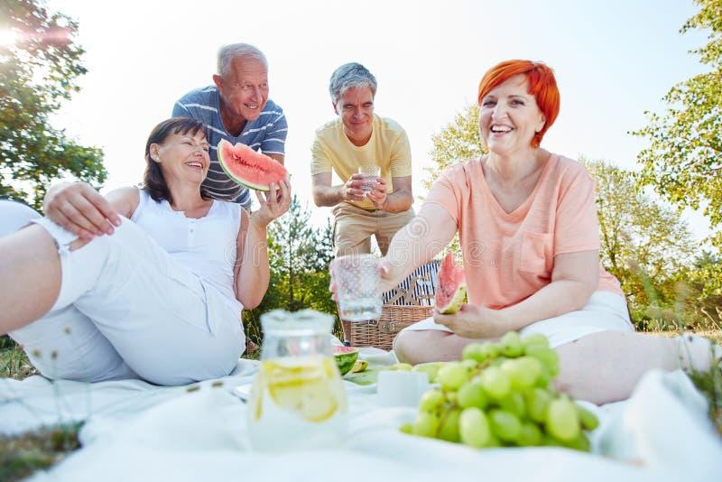 Senioren, die Früchte in einem Picknick essen stockbilder