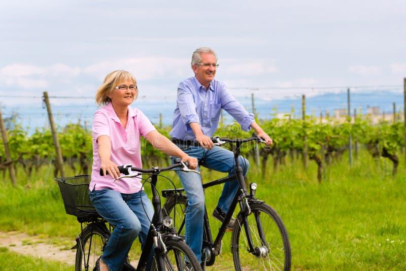 Senioren, die mit Fahrrad trainieren stockfotografie