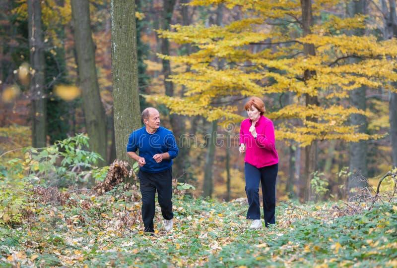 Seniors couple jogging. Senior Couple doing sport outdoors royalty free stock photos
