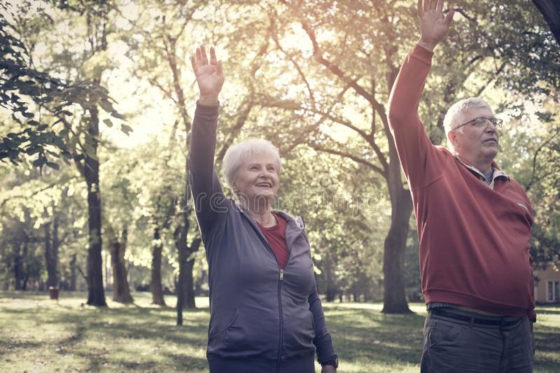 Seniors couple stretching arms and exercising together in. Active seniors couple stretching arms and exercising together in meadow royalty free stock photo