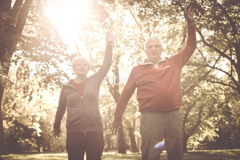 Couple stretching arms and exercising together in meadow. Seniors couple stretching arms and exercising together in meadow stock photography