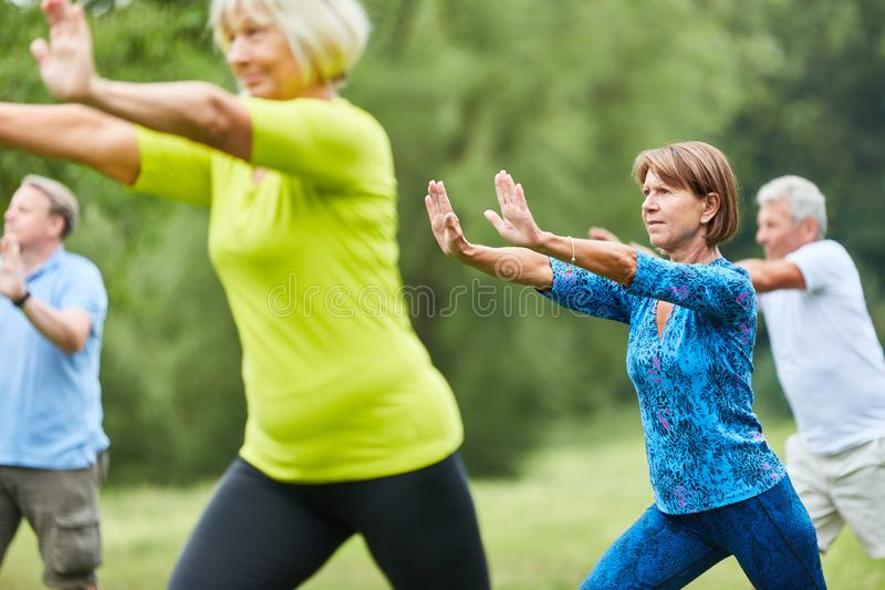 Seniors do Qi Gong or Tai Chi exercise. For relaxation and health stock photography