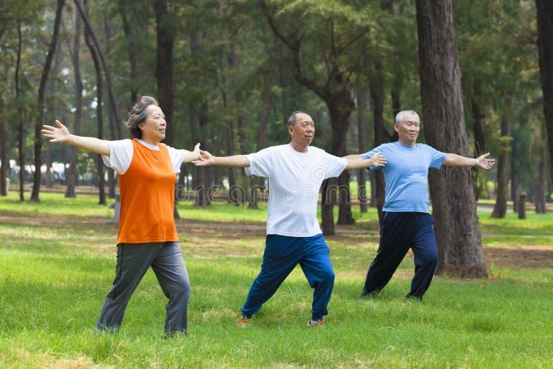 Seniors doing gymnastics in the park. Asian seniors doing gymnastics in the park stock photography
