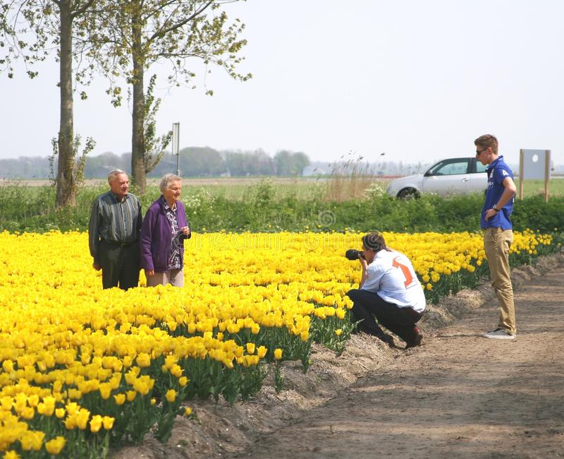 Senior couple visit the bulb route in the tulip fields, Noordoostpolder, Netherlands stock photo