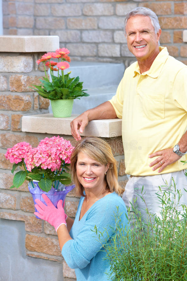 Download Seniors gardening stock image. Image of couple, couples - 15442555