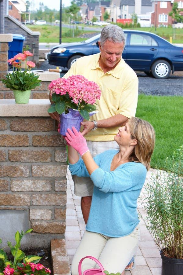Download Seniors gardening stock image. Image of park, couples - 15442561