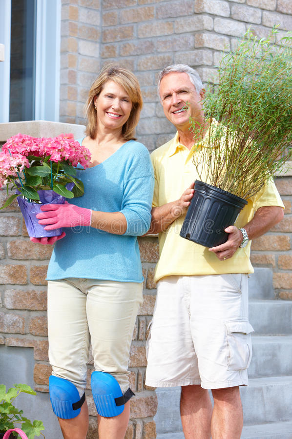 Seniors gardening. Smiling happy elderly seniors couple gardening near the home royalty free stock images