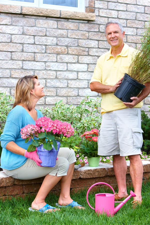 Seniors gardening. Smiling happy elderly seniors couple gardening near the home stock images