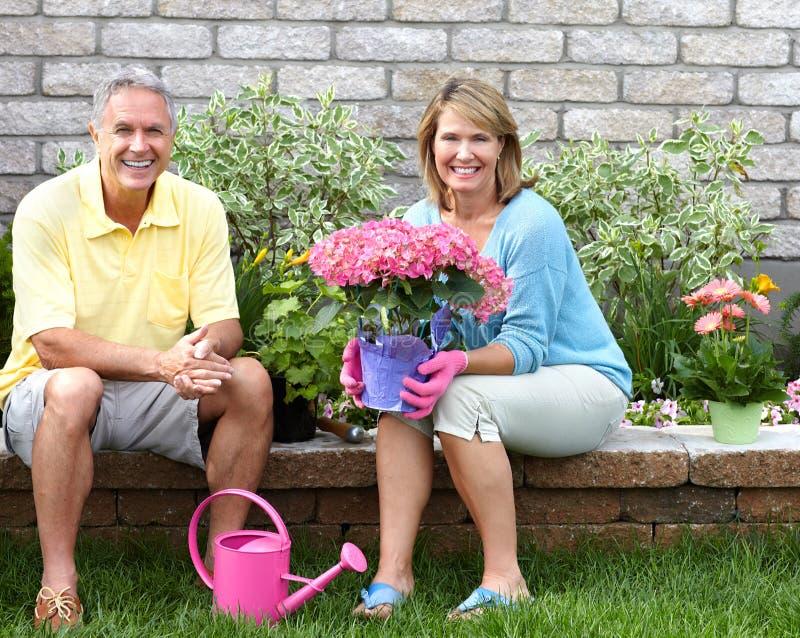 Seniors gardening royalty free stock images