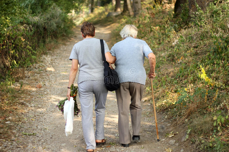 Download Seniors in park stock photo. Image of discovery, female - 26927590