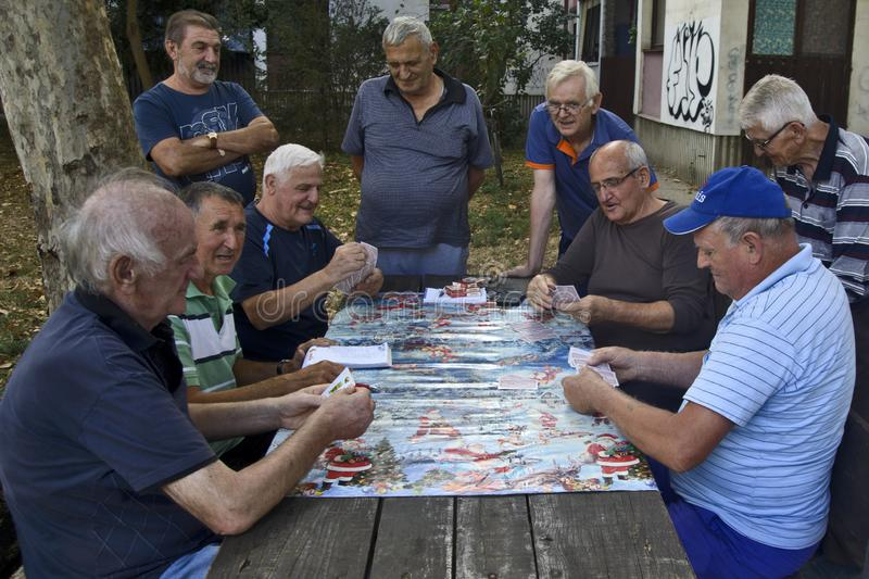 Seniors play cards. ZRENJANIN, SERBIA, SEPTEMBER 05,2019. A group of senior citizens mostly retirees having fun playing cards outdoors in the park royalty free stock photography
