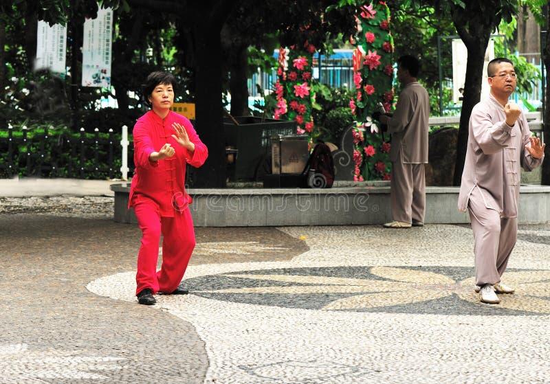 Download Seniors playing tai chi editorial stock photo. Image of practise - 25608753
