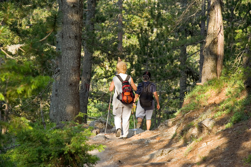 Seniors trekking in the woods royalty free stock image