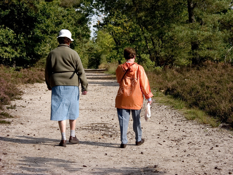 Seniors walking in forest. royalty free stock photography
